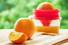 Oranges and juicer Royalty Free Stock Photo