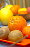 Oranges and Kiwi Stock Image