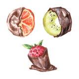 Oranges and kiwi fruit in chocolate. Set on a white background. Stock Photo