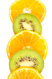 Oranges and kiwis slices. Closeup over a white background royalty free stock photos
