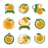 Oranges labels and elements set. Vector Royalty Free Stock Images