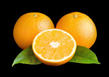 Oranges and leafs. Three juicy oranges and green leaves on a black background Stock Photography