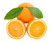 Oranges with leaves Royalty Free Stock Photo
