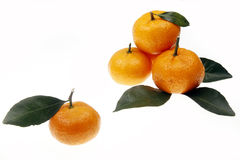 Oranges with leaves Royalty Free Stock Photos
