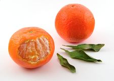 Oranges with leaves. Two oranges and three leaves Royalty Free Stock Images