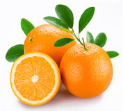 Oranges with leaves Stock Photo