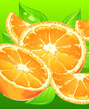 Oranges with leaves on green Royalty Free Stock Photo
