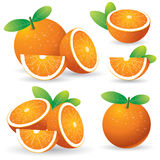 Oranges with leaves set Stock Photo