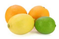 Oranges, lemon and lime. Citrus colors - orange, yellow, green stock image
