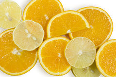Oranges and lemons. Background from oranges and lemons circles Stock Photos