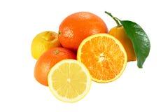 Oranges and lemons. Cut oranges and lemons on white background Stock Photos