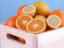 Oranges and lemons. Box of sweet oranges and fresh lemons on blue background royalty free stock images