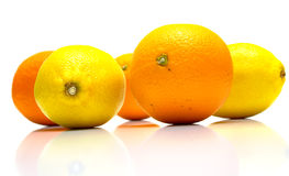 Oranges and lemons. The ripe whole oranges and yellow lemons with real reflexion on white, shallow DOF. Isolation Stock Photography
