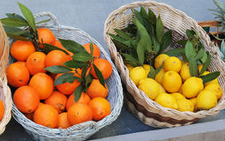 Oranges and lemons Stock Photography