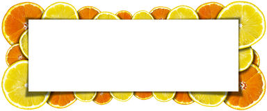 Oranges and Lemons Banner Royalty Free Stock Image