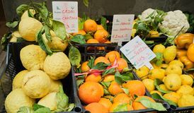 Oranges, Lemons, fruits and Vegetable at Street Markt. Fresh oranges, lemons, fruits and vegetables on a street market in Sorrento, Italy royalty free stock photos