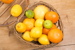 Oranges, lemons and grapefruit presented in a small basket Stock Photography
