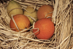Oranges and lemons in the hay. Juicy oranges with lemons in the hay Royalty Free Stock Images