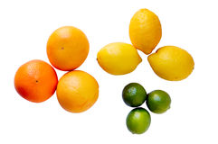 Oranges lemons and lime Stock Image