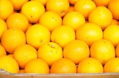 Oranges lumineuses Photo libre de droits