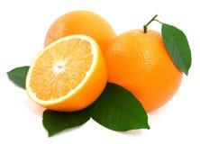 Oranges mûres avec la lame verte. Images libres de droits