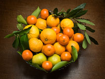 Oranges and mandarins Royalty Free Stock Photography