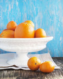 Oranges and Mandarins Royalty Free Stock Images