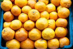 Oranges in a market Stock Photography