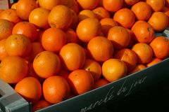 Oranges at the market Royalty Free Stock Photography