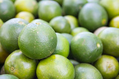 Oranges in the market Royalty Free Stock Photography