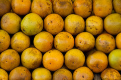 Oranges in the Market Stock Image