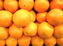 Oranges at the market Stock Image