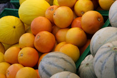 Oranges and melons Royalty Free Stock Photography