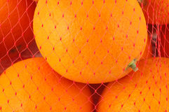 Oranges in mesh bag. Fresh juicy oranges in mesh bag closeup Stock Photo