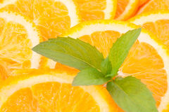 Oranges and mint Royalty Free Stock Images
