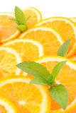 Oranges and  mint Stock Image
