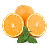 Oranges and mint. Isolated over white Stock Image