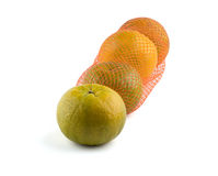 Oranges in net. On white background Royalty Free Stock Image
