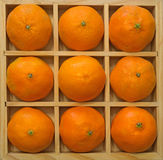 Oranges. Nine bright oranges nestled in a printers box royalty free stock photo