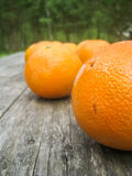 Oranges on an old wooden table. Full oranges on an wooden table, placed outdoors Royalty Free Stock Photos