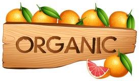 Oranges and organic sign. Illustration royalty free illustration