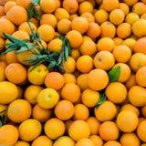 Oranges organiques juteuses fra?ches sur le march? d'agriculteurs Fond orange en gros plan E photographie stock