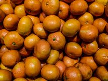 Oranges. Pile of oranges ready for sale Royalty Free Stock Image
