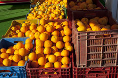 Oranges in plastic containers Stock Images