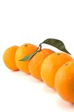 Oranges in a row royalty free stock photography