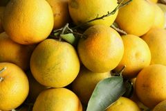 Oranges. For sale at the local market in Da Nang, Vietnam Royalty Free Stock Photo