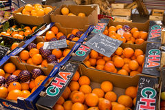 Oranges for Sale Marche Royalty Free Stock Photography