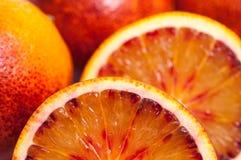 Oranges sanguines Image stock