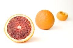 oranges sanguines photo libre de droits