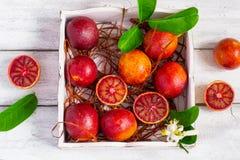 Oranges sanguines juteuses, entier et demi, sur un fond blanc Photos libres de droits